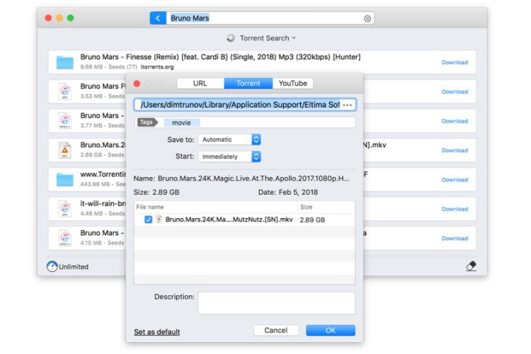 Internet Download Manager for Mac